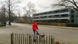 Meer bewegen voor ouderen in Malden en Brakkenstein